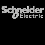 Schneider-300x300